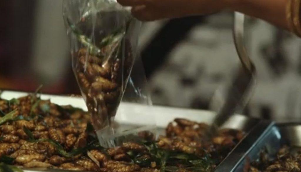 insetti tailandia